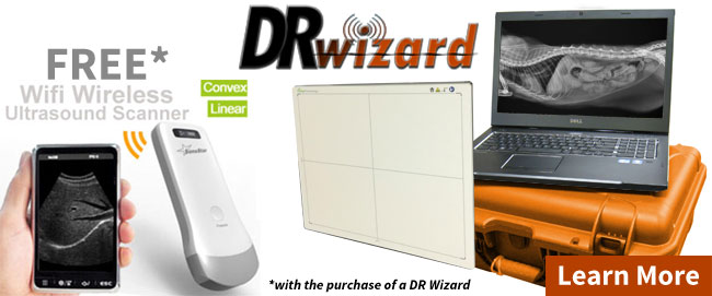 wireless wizard flat panel