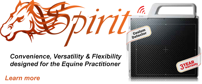 Spirit Equine Digital X-ray DR flat panel