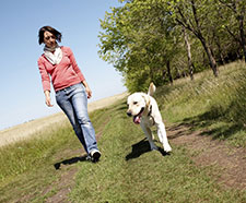Image result for 6 Budget-Friendly Ways to Bond with Your Dog
